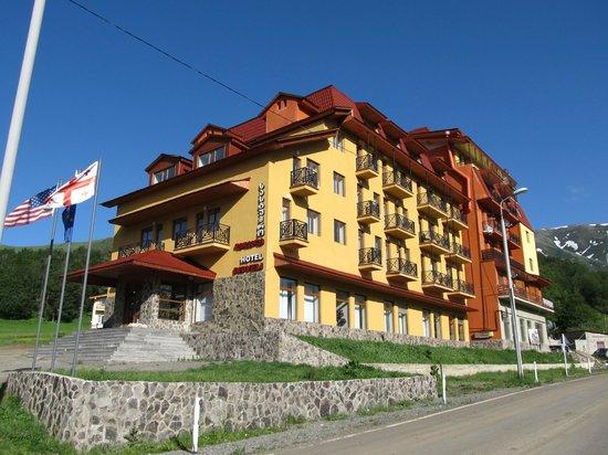 Отель Дидвели