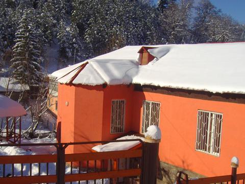 Bakuriani Hostel