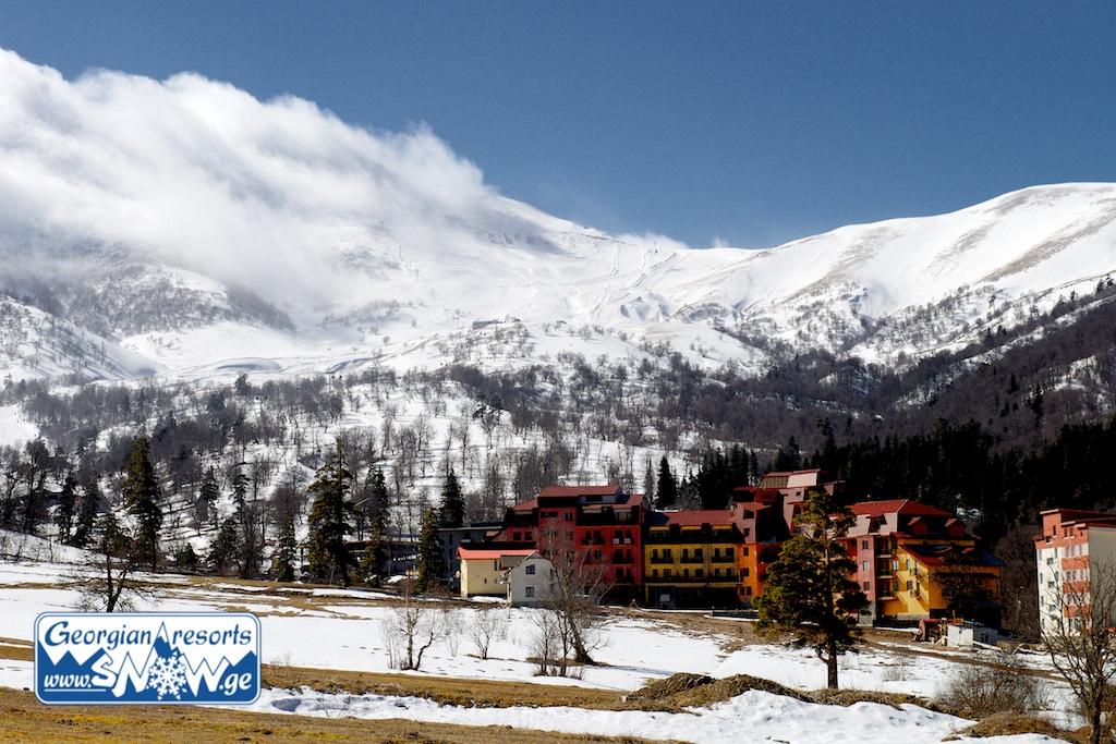 Курорт отели в абхазии фото если собрались